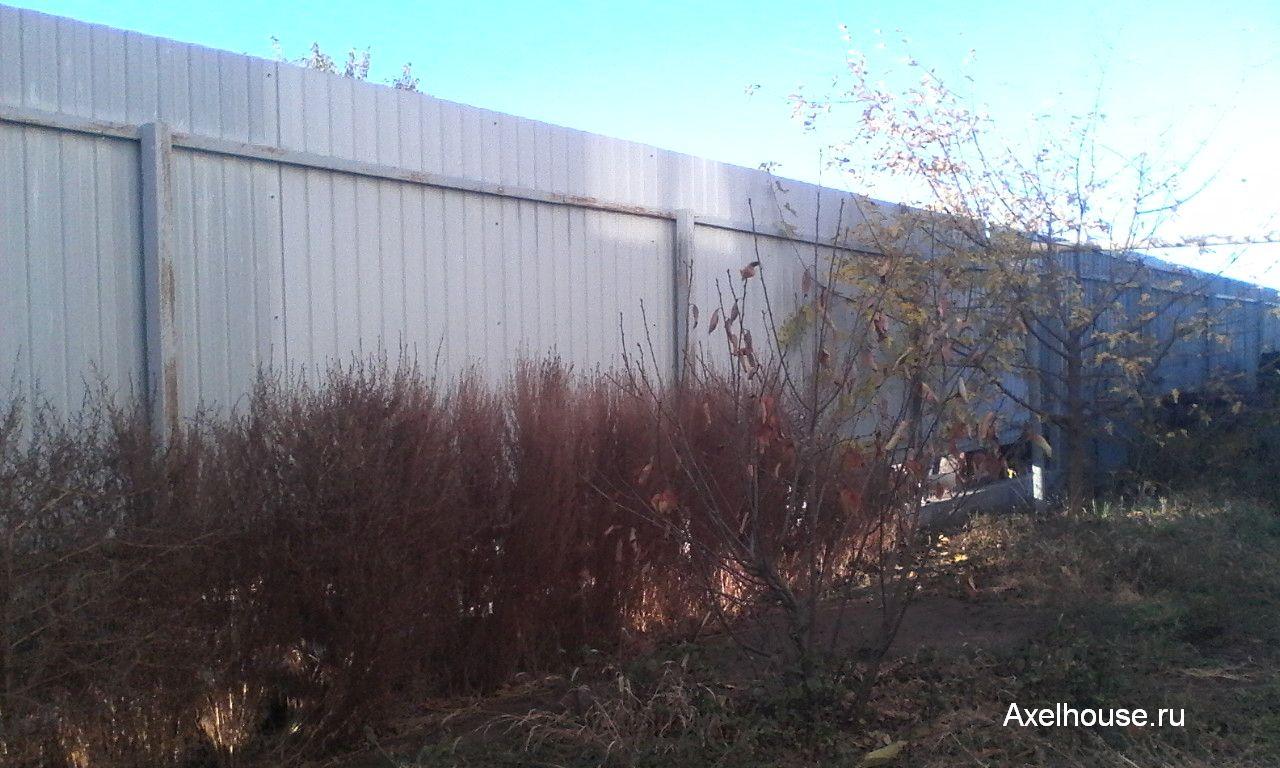 Забор на даче с внутренней стороны